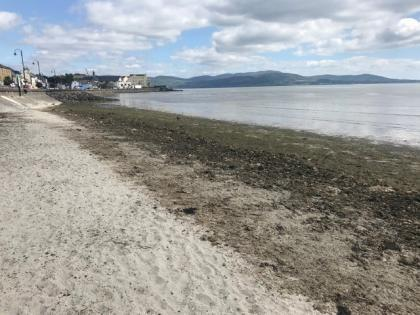 Luxury Beach Front Apartment - Holiday Rental in Blackrock