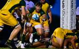 Former Dundalk RFC man helps Australia get off to a winning start at the U20 rugby World Cup