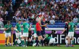 Joe Schmidt names Ireland team to face New Zealand
