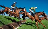 THE PUNTER'S EYE: Willie Mullins can continue resurgence with Daisy's Gift on Sunday