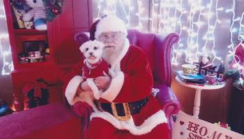 Louth SPCA host Santa Paws event in Long Walk