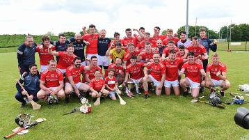 First silverware of 2021 goes to Louth hurlers who bag Division 3B title with victory over Fermanagh