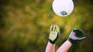 Division Two Roundup: Wins for Roche Emmets and Clan Na Gael