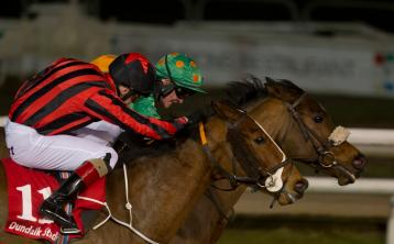 Winter Lion roars to victory at Dundalk Stadium