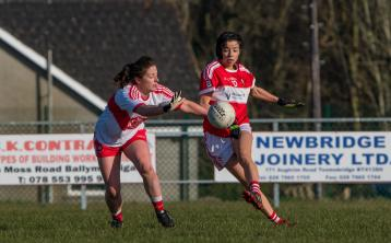 Louth ladies picked up their third league win of the year with a commanding performance against Derry