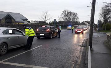 Garda checkpoints in Ardee as part of probe into death of Elizbieta Piotrowska