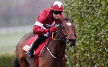 INSIDE TRACK | Grant National winner Tiger Roll another star to cover Dundalk Stadium course