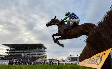 Irish owners face massive tax bill if sending horses to Cheltenham