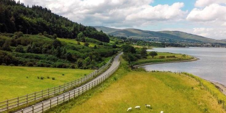 Local councillor calls for safety audit of Carlingford Greenway, following a cycling accident last month